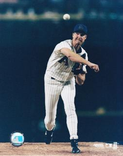 Randy Johnson Arizona Diamondbacks 8x10 Photo